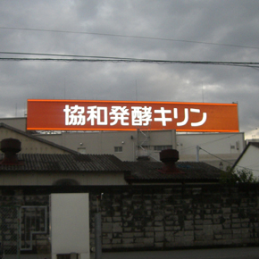 キリン 協和 発酵